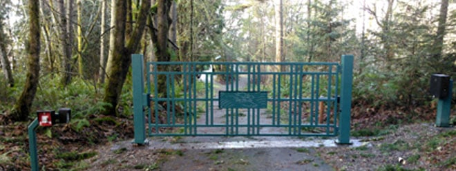Custome Decorative Iron Driveway Gate | Powdercoated Green | Automatic Opening | Salmon Art